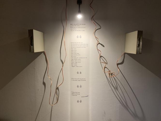 Herbarium Collection - Artists - Merve Kılıçer - Selected works 5