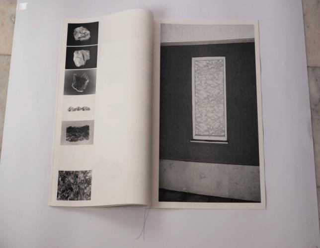Herbarium Collection - Artists - Martin Atanasov - Selected works 5