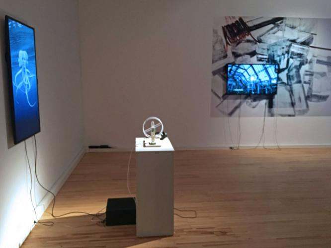 Herbarium Collection - Artists - Albena Baeva - Selected works 2