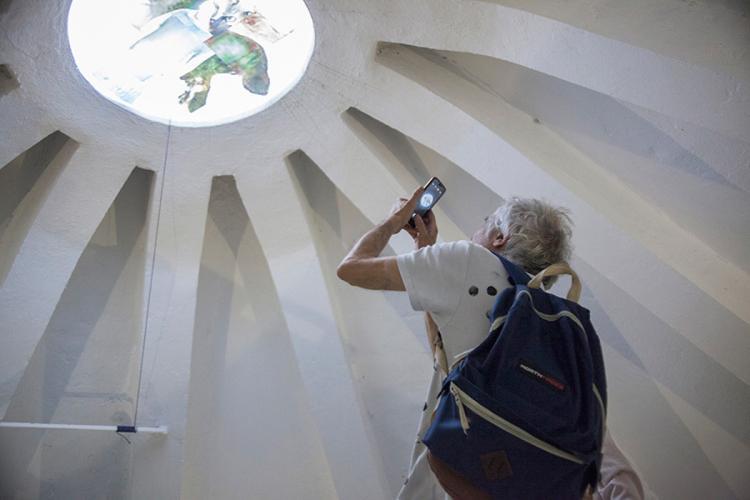 Herbarium Collection - Artists - Albena Baeva - Selected works 4
