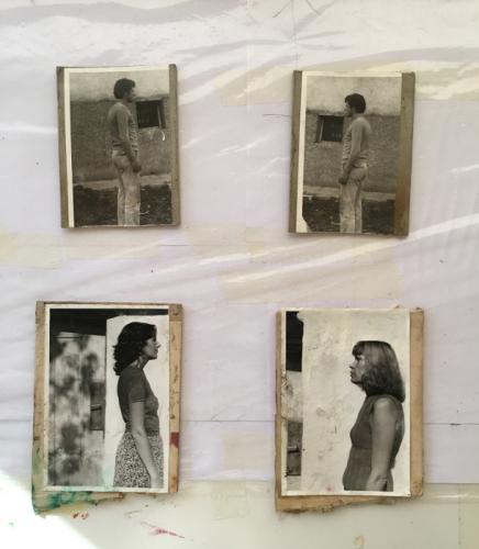Herbarium Collection - Artists - Sasho Stoitsov - Selected works 8