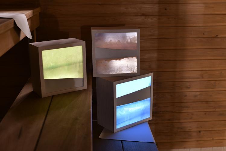 Herbarium Collection - Artists - Leda Vaneva - Selected works 3