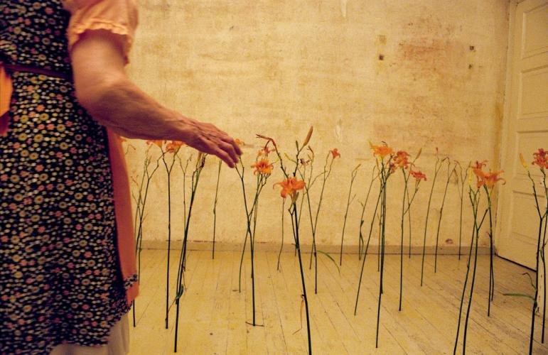 Herbarium Collection - Artists - Youlian Tabakov - Selected works 9