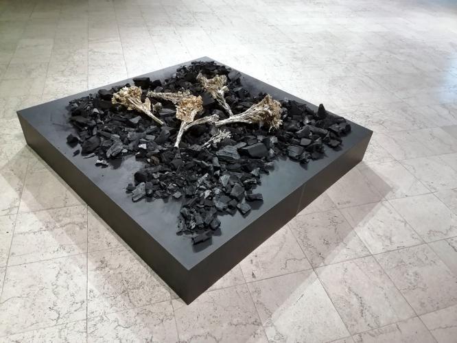 Herbarium Collection - Artists - Kalina Dimitrova - Selected works 8