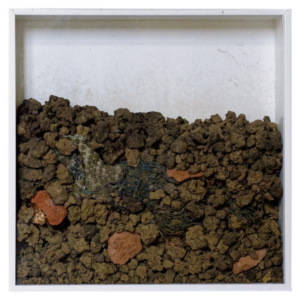 Herbarium Collection - Collection - Into The Deep - Adela Goranova