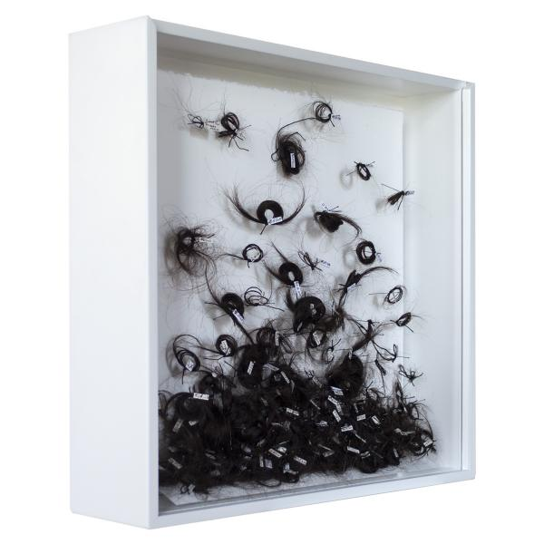 Herbarium Collection - Collection - Day By Day - Yulian Tabakov