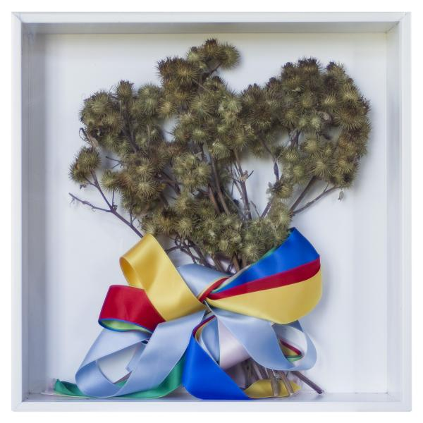 Herbarium Collection - Collection - Something Amazing Is About To Happen - Kinga Kielczynska