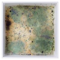Herbarium Collection - Collection - When You Look At The Stars, You See The Past - Aksinia Peycheva