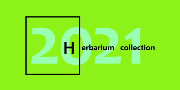 Herbarium Collection - Events - THE HERBARIUM AS A PLACE FOR STORING IDEAS